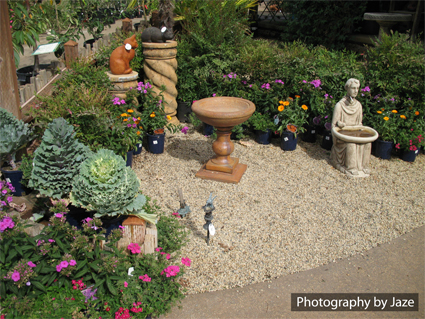 Amador County Flower Farm Garden Water Fountains